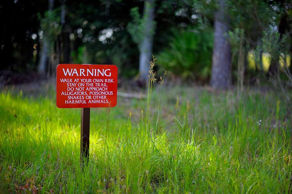 Warning by Kurt Kamka