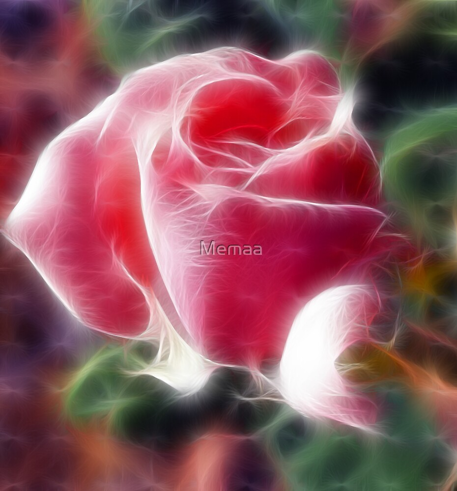 A Rose Bud Study by Memaa