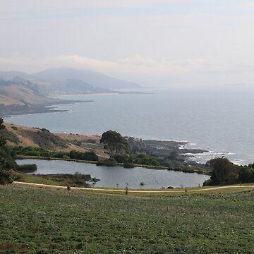North Coast have Tasmania* by varmifsud