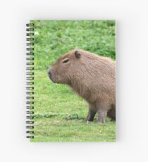 Capybara Spiral Notebook