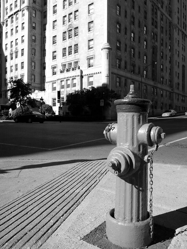Street Pump, Montreal by feldore