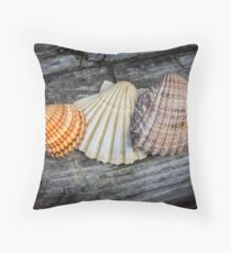 Sea Shells on Wood Floor Pillow