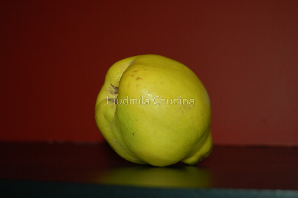 Yellow Quince by MiLa