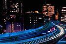 Autumn in Japan:  Electric City by Jen Waltmon