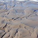 Sand and Sea Swirls by Carol Barona