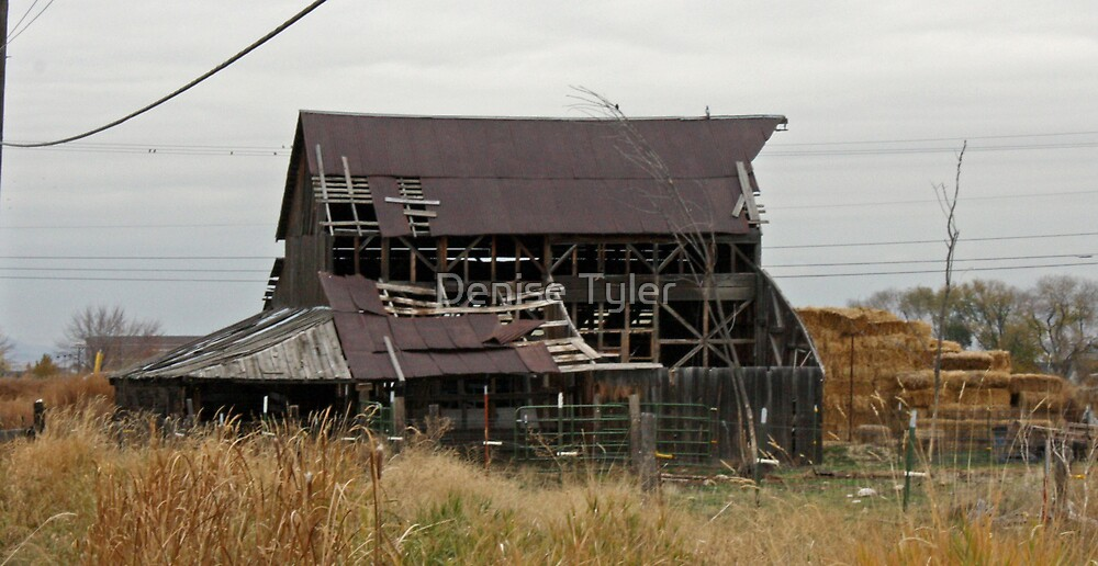 Old Barn on Linder Road by Denise Tyler