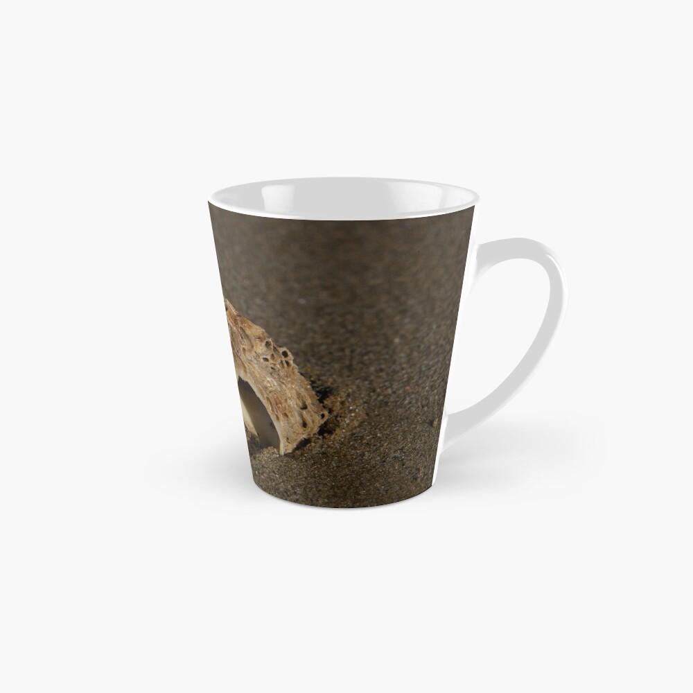 Weathered Whelk on Fahan Beach Mug