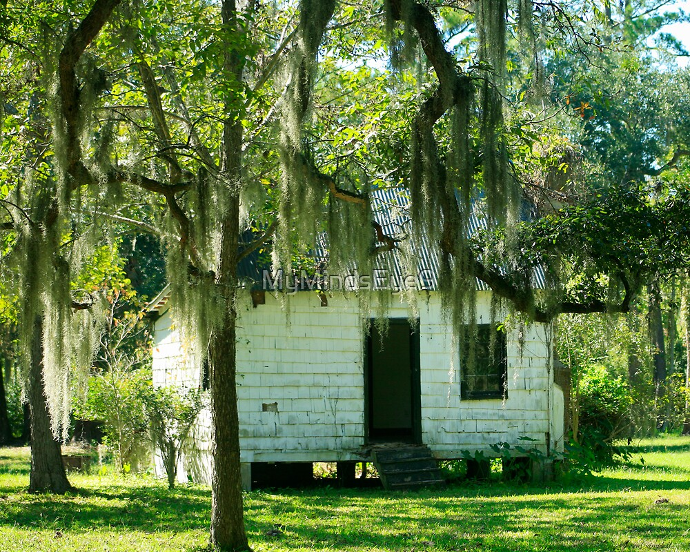 Slave Cabin - Magnolia Plantation by Mary Campbell