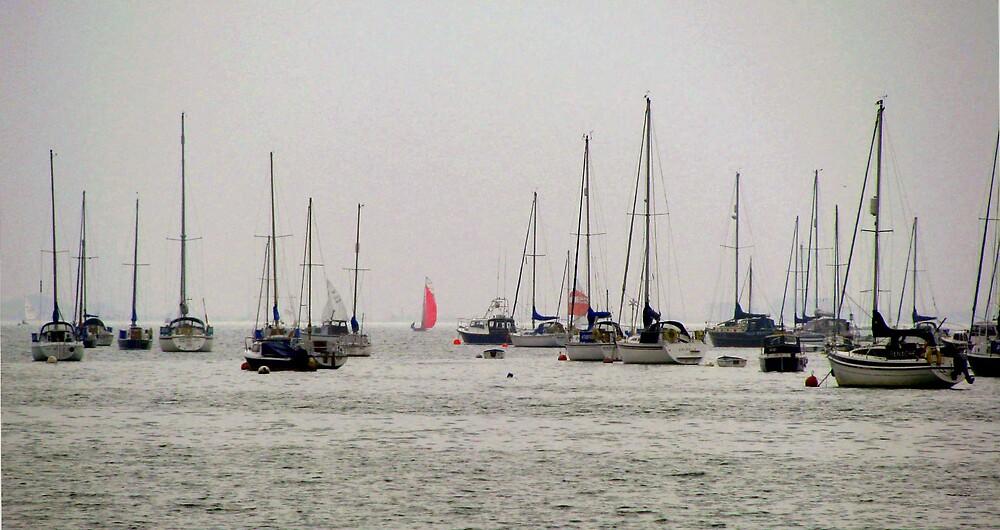 masts by Caroline Anderson