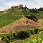 Staufenberg Castle by Yair Karelic