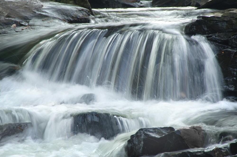Waterfall B/W by Francesa