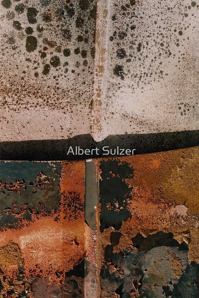 Burntout car 2 by Albert Sulzer
