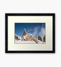 Climber Framed Print