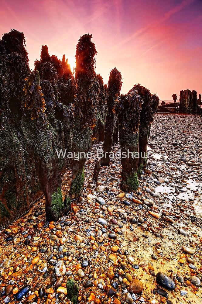 Walberswick Beach Suffolk 4. by Wayne Bradshaw