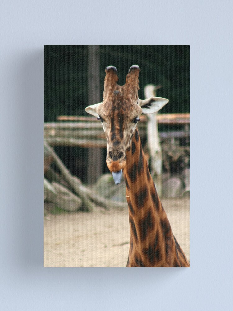 Alternate view of You want to see my tongue? Canvas Print