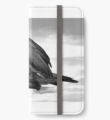 America At Risk iPhone Wallet