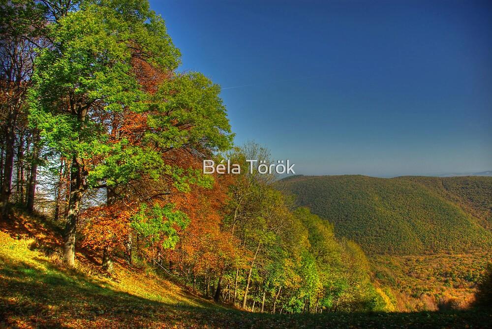 Colorful Hills by Béla Török
