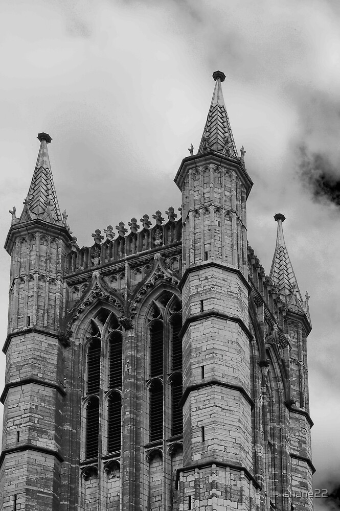 Lincoln Cathedral II by shane22