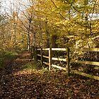 Autumn Way by DonMc