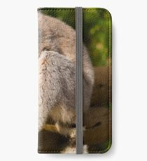 Hungry Lemur iPhone Wallet/Case/Skin