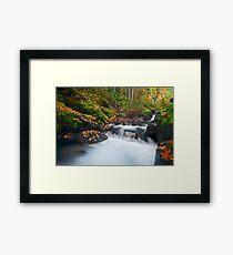 Autumn Treasure Framed Print