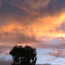 clouds 2 by usefulltool