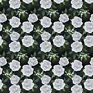 winter rose // repeat pattern by lauragraves