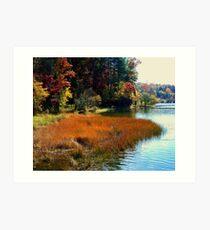 Along the Lake Edges Art Print