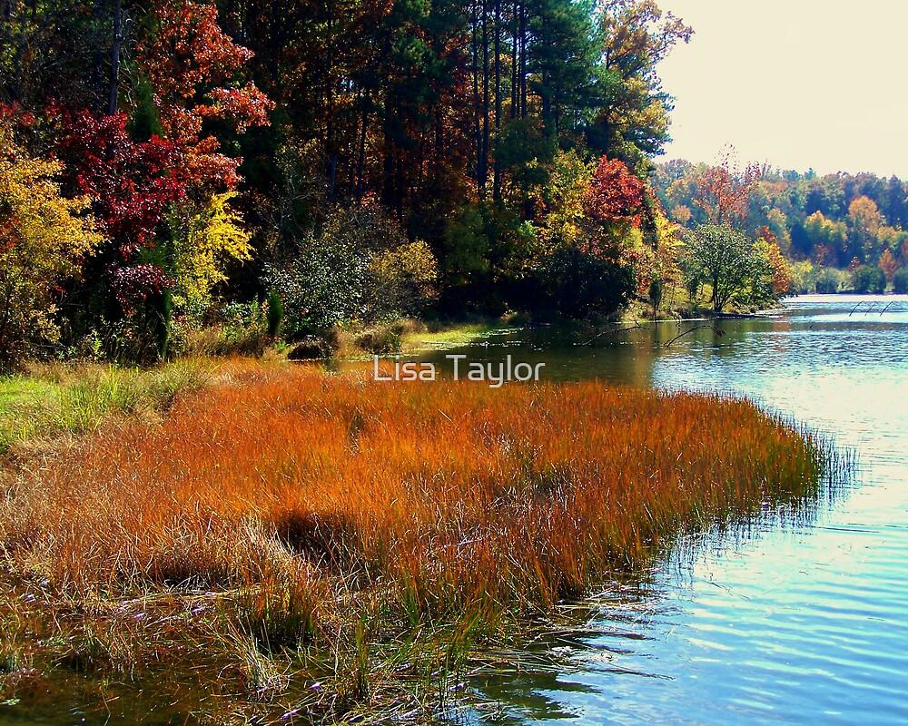 Along the Lake Edges by Lisa Taylor