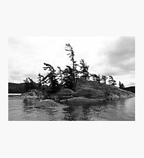 Where There's A Will Black And White Photographic Print