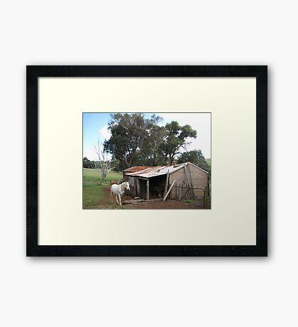 Old sheds Framed Print
