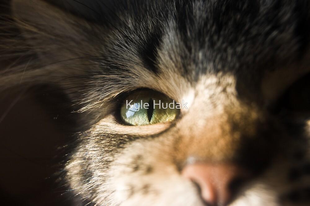 A Star in Monster's Eye by Kyle Hudak