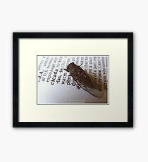 Idiot's Dictionary- Cicada Framed Print