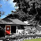 MAUI MILL HOUSE  by WhiteDove Studio kj gordon