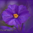 Floral February by EnchantedDreams