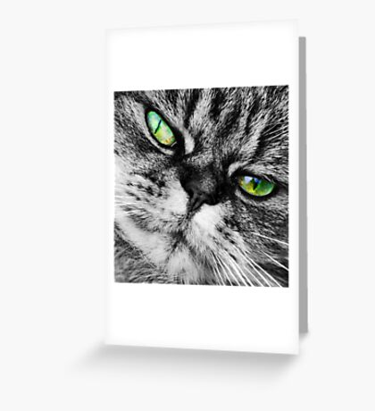 Cat with Ultra Green Eyes Greeting Card