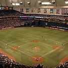 Metrodome by Marzdogg19