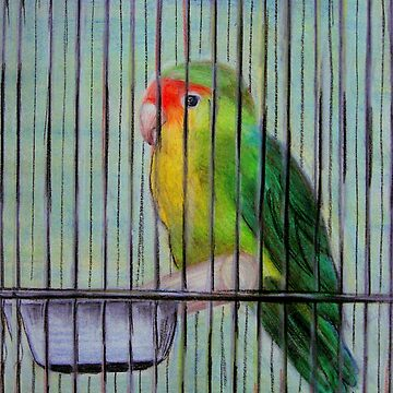 Bird in a Cage by orlacahill