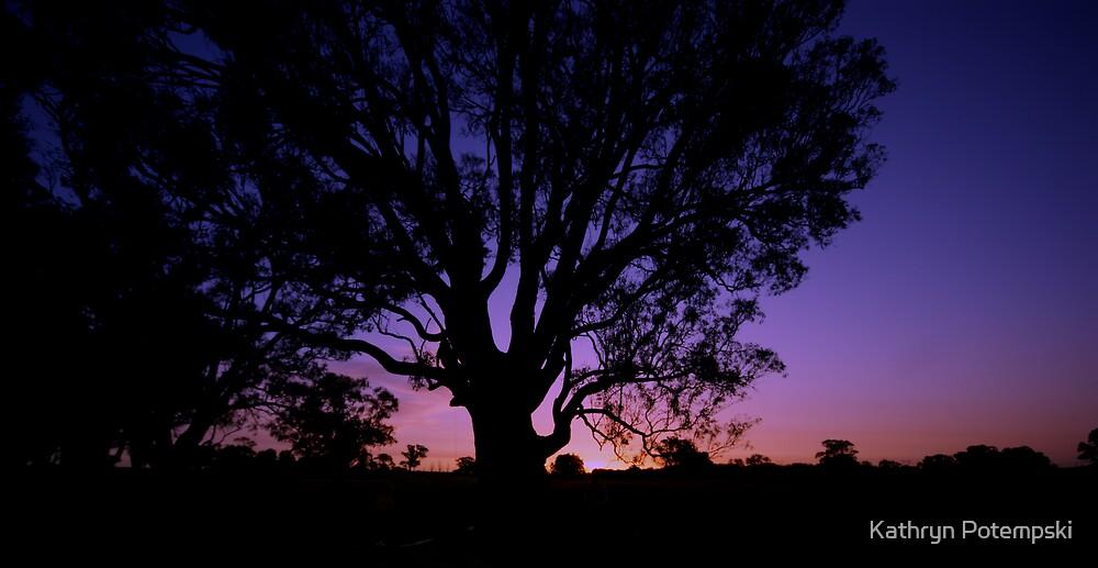 Thursday Sunset by Kathryn Potempski