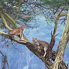 Löwen in einem Baum von Carole-Anne