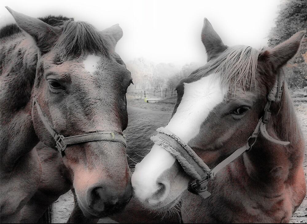 Horses by alaskaman53