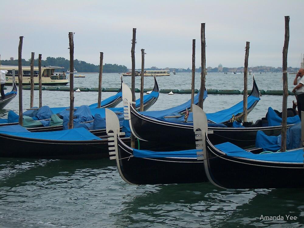 Venice by Amanda Yee