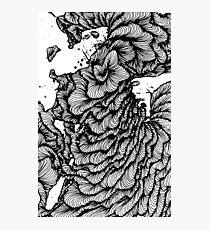 Black swirl art Vector Image Photographic Print