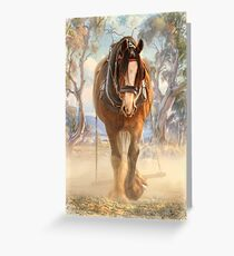 The Clydesdale Greeting Card