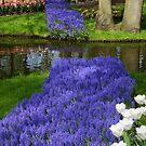 Spring by Anne-Marie Bokslag