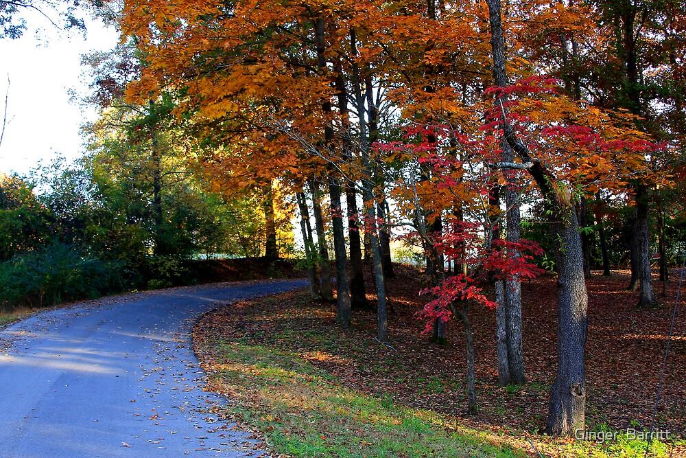 Autumn Road by Ginger  Barritt