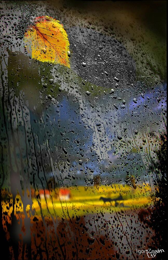 An Autumn Day by Igor Zenin