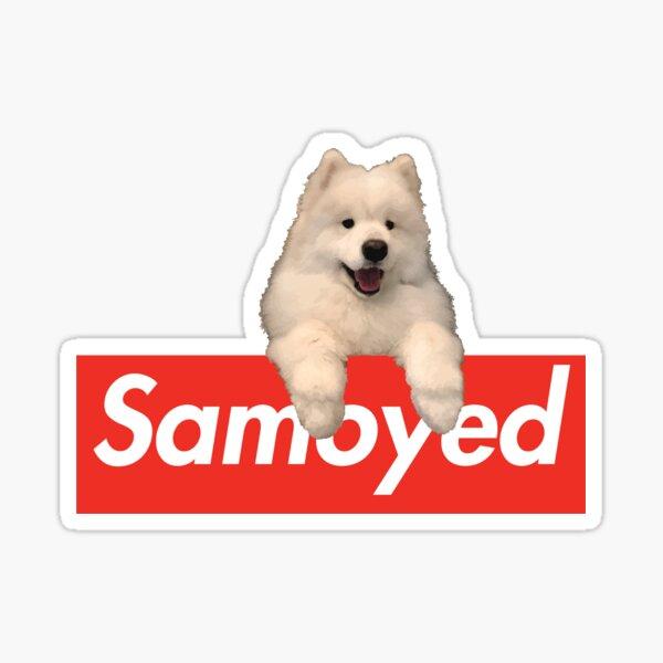 Samoyed x Hypebeast Brand collab Sticker