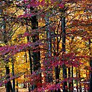 Kissed by Autumn by Ginger  Barritt