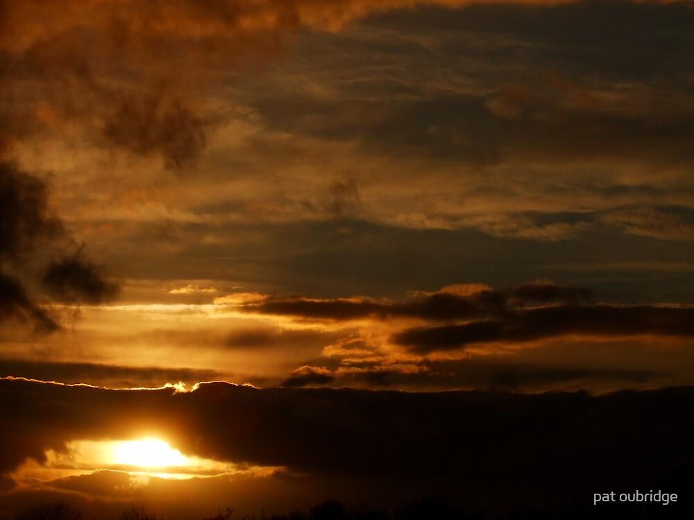 Golden Evening by pat oubridge